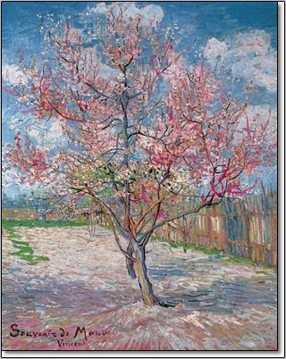 עץ אפרסק פורח - ואן גוךעץ, פרח, אמנות קלאסית, ואן גוך, ון גוך , אפרסק, פרחים, פריחה, אביב, ענף, גזע