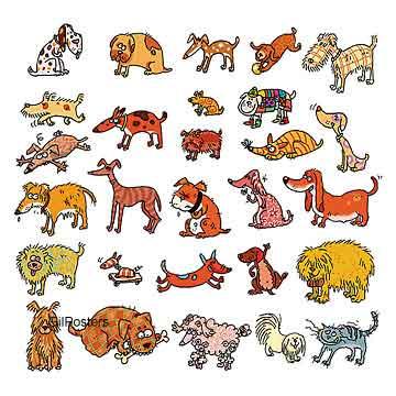כלבים וחתולחתלתול כלבלבים חיוכים חיות נאיבי