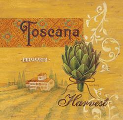 יבול טוסקניתמונות של מזון  תמונות של פירות ירקות   קורטיבי, טוסקנה, נוף , איטליה, ארטישוק