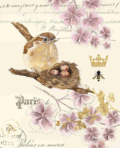 ציפור וקןציפורים  45