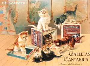 Galletas Cantabria
