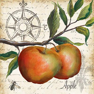 תפוחיםתמונות של פירות ירקות
