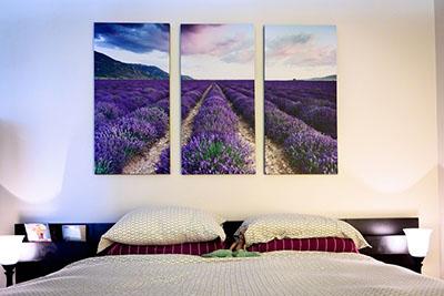 נוףשדה תמונות לסלון תמונות לבית פרויקטים