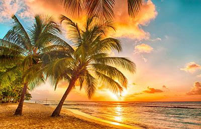 חוף ים  Beachשקיעה   Sunset