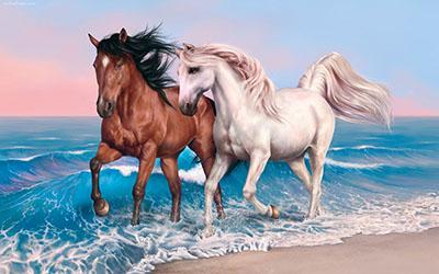 סוסים - Horses