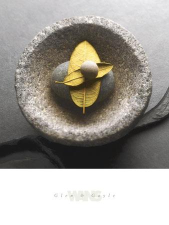 אבן על עליםצילום, עלה, אבן, חלוק נחל, זן, טבע, נקיון, נקי, אבן ,עלים