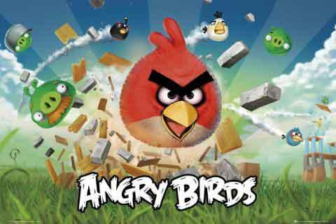 אנגרי בירדס 1Angry Birds מצוירים ציפורים כועסות חדר ילדים משחקים