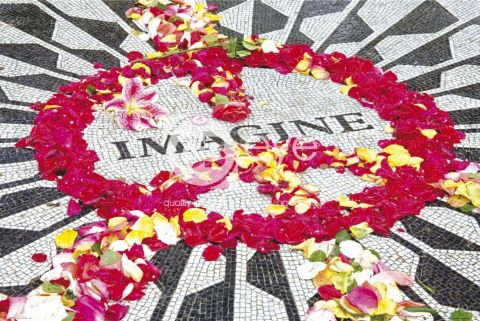 החיפושיותהחפושיות להקה זמר the beatles אבי רוד Imagine פופ קלאסיקה