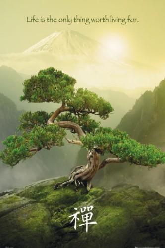 Mountain zen  הרים זןMountain zen  הרים זן