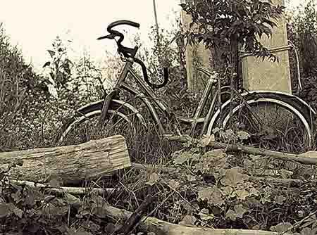 אפנייםאפניים