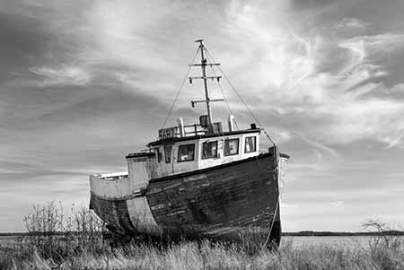 ספינהספינה