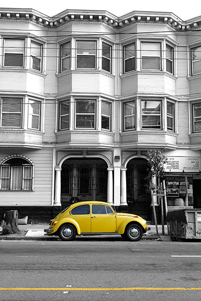 חיפושית צהובה  נגיעות צבע