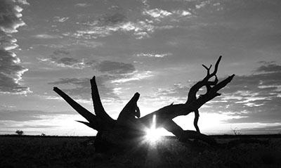 זריחה שקיעה   Sunset