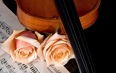 Violin-Rosesמוזיקה -  מוסיקה   __