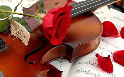 מוזיקה -  מוסיקה   _music-violin-red-rose
