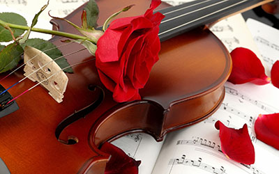 violin red roseמוזיקה -  מוסיקה   _music-violin-red-rose