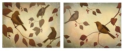 ציפורים - תמונה בחלקיםציפורים