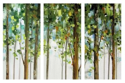 עצים - תמונה בחלקיםעצים