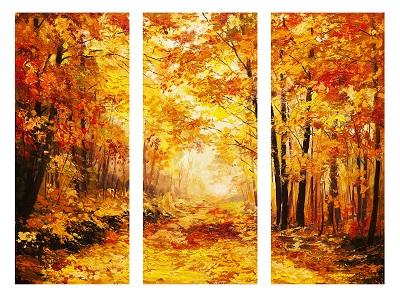 שביל ביער - תמונה מחולקתשביל ביער  עצים