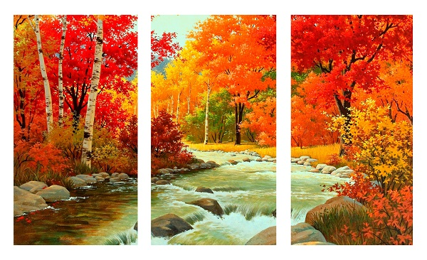נחל ומפל ביער - תמונה מחולקתנחל ומפל ביער  עצים