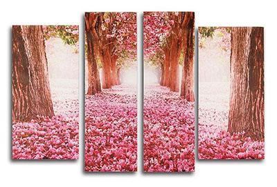 דרך ורודה דרך ורודה   עצים יער