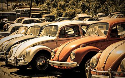 חיפושיותתמונות של מכוניות חיפושיות   _old_volkswagen_beetle_junkyard  מכונית