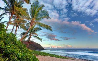 חוף ים  Beach