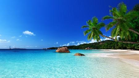 חוף טרופיחוף טרופי