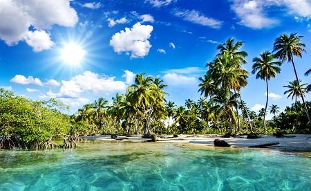 חוף טרופיחוף טרופי tropics_palm_trees_sun_beach