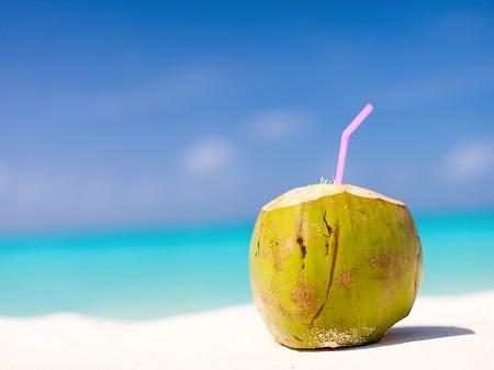 קוקוס בחוף טרופי קוקוס בחוף טרופי -Coconut-on-a-tropical-beach
