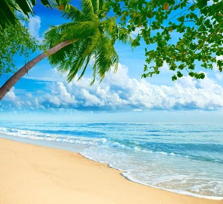 חוף  בתאילנד  beach thailandחוף  בתאילנד   beach_thailand_ocean