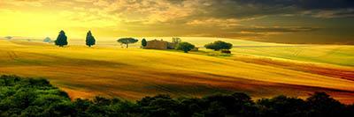 נוף כפרי  - איטליהGP-VIEW-3001W  טוסקנה  תמונות של שדות צילומים