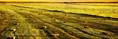 ארמניה  Armenia ארמניה  Armenia  תמונות של שדות צילומים
