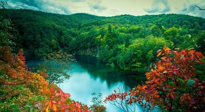 ירוק  גן  עדן ירוק  גן  עדן