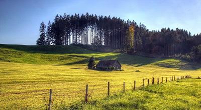 שדה ובקתהשדה ובקתה