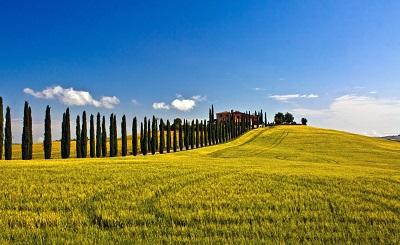 נוף איטלקי italian landscapeנוף איטלקי italian landscape