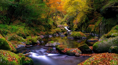 mountain creek mountain creek