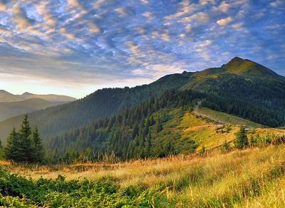 הריםהרים