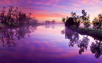 purple river purple river
