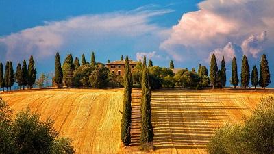 טוסקנה  עצים טוסקנה  tuscany_italy_italia_house_approach_ultra