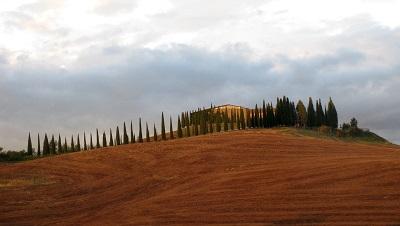 טוסקנה   Tuscanyתמונות של שדות צילומים
