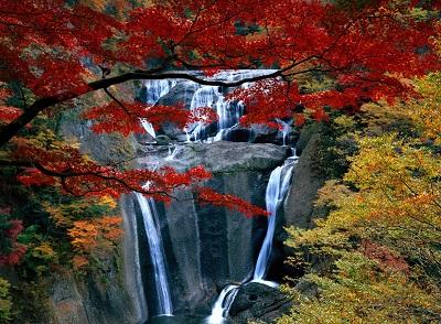 מפל באביב waterfall autumnמפל באביב waterfall autumn