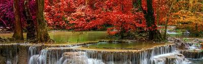 מפל עם עץ אדוםמפל עם עץ אדום waterfall_red_trees