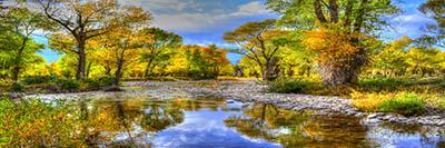 עצים ומים  small-river_trees_stones_autumn_landscape_wyoming
