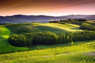 נוף כפרי   italy-tuscany-countrysideתמונות של שדות צילומים  כרמים