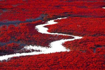 שדות אדומים ונהרשדות אדומים ונהר