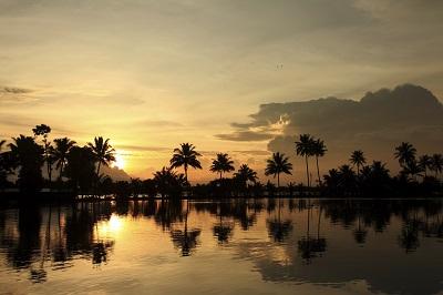 המים הסכורים - הודו - שקיעההמים הסכורים - הודו -Kerala Backwater landscape