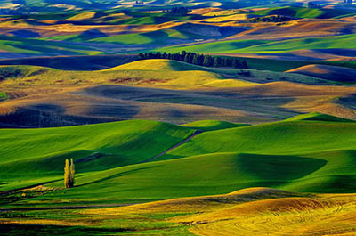Amazing Colorful Hills_Palouse Valley