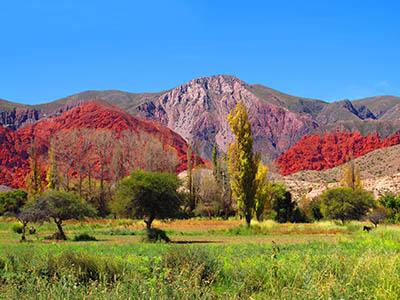נוף ציבעוני  _mountain_village_landscape_field