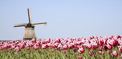 טחנת רוח - הולנדטחנת רוח - הולנד